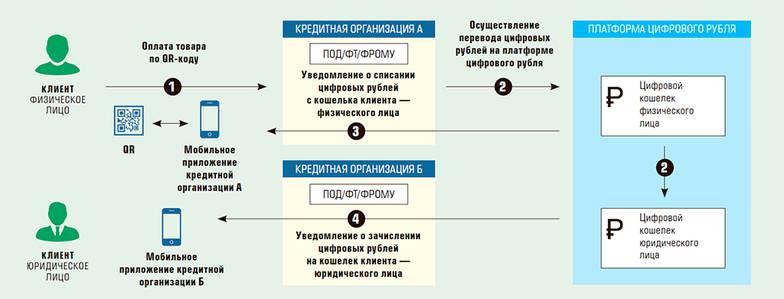 Схема покупки товаров за цифровые рубли